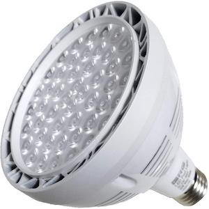 LED Pool Light Bulb Pentair Hayward Replacement Bulb On Amazon